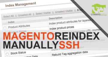 Manually Refresh Magento Indexes Via SSH