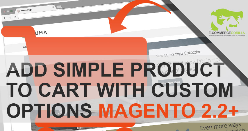 How to Add Simple Products to Cart with Custom Options in Mageno 2 2